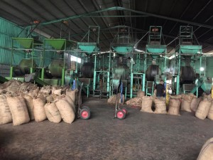 cashew steaming system